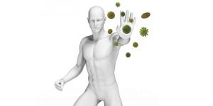 antineoplasicos+imunomodulares